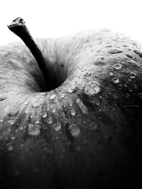 La manzana y Steve Jobs