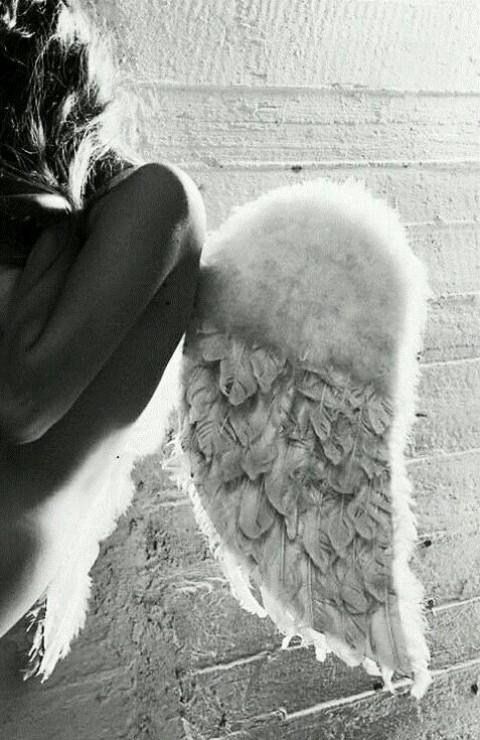 Con nuevas alas
