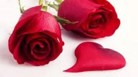 Cuidar el amor (San Valentín)