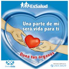 donacion organos 2011